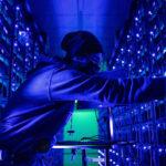 România – prima opțiune ca Privacy Paradise a giganților tech